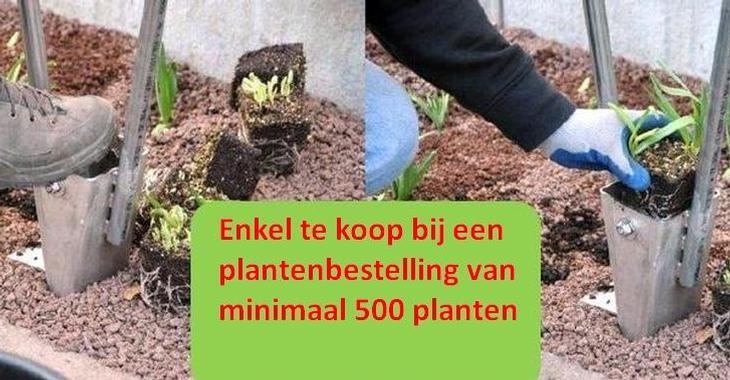 .Prairieplanter -PRO-aankoop (geen huur mogelijk)